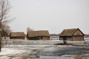 Pripyat Marshes, near Stolin, Brest Region, Belarus