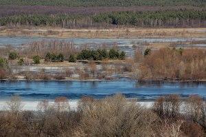 Pripyat River, Mazyr, Homyel' Region, Belarus