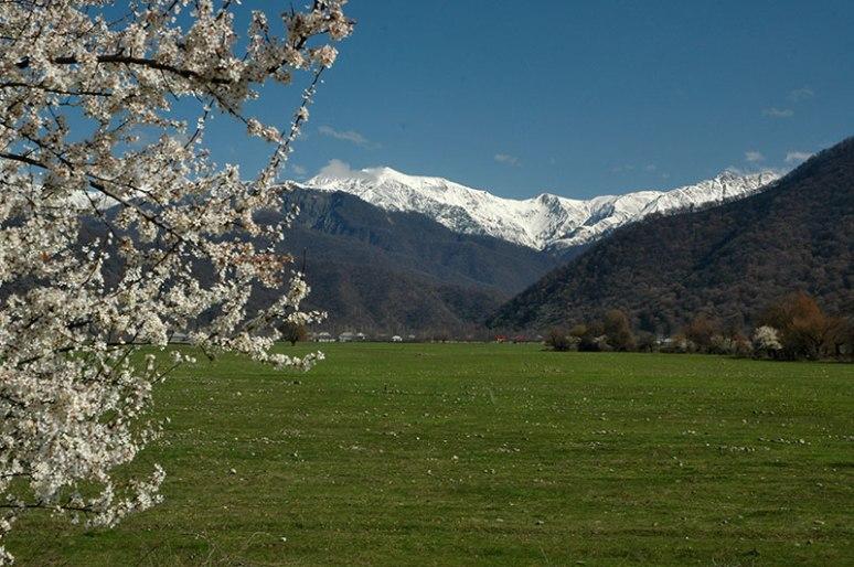 Greater Caucasus Mountains, near Qabala, Daghlig Shirvan Region, Azerbaijan