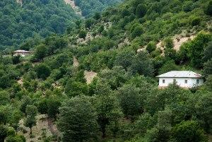 Talysh Mountains, near Nav, Gilan Province, Iran