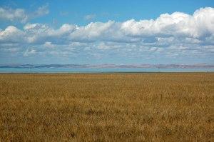 Zun-Torey Lake, Zabaikal Territory, Russia
