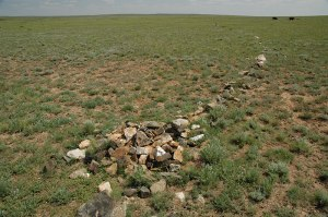 Moustachioed Kurgan, Ulytau, Karaganda Region, Kazakhstan