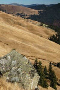 Gorgany Mountains, Zakarpattia Region, Ukraine
