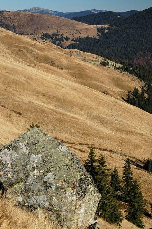 Gorgany Mountains, Zakarpattia Region, Ukraine