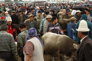 Animal Market, Karkol, Issyk Kul Region, Kyrgyzstan