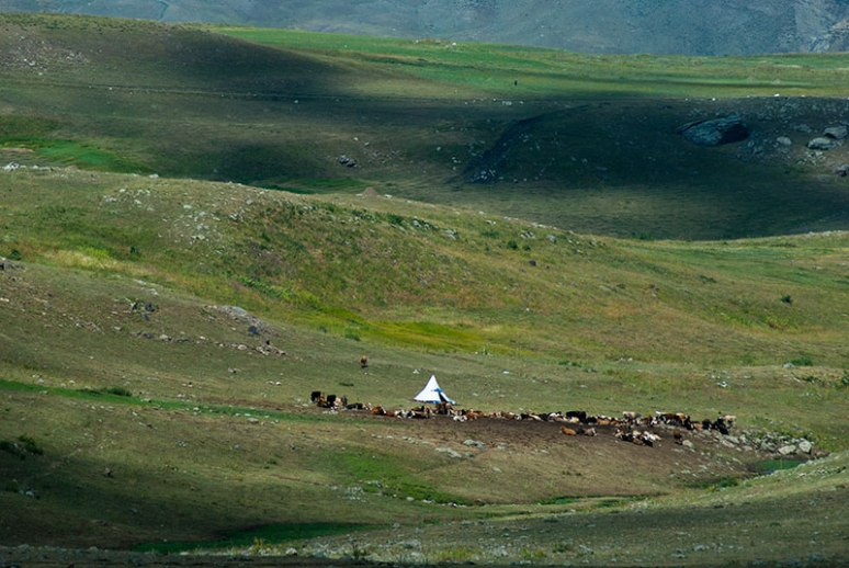 Kurdish Shepherds, near Kağızman, Kars Province, Turkey